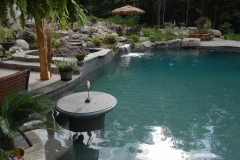 Residential Pool Photo 300